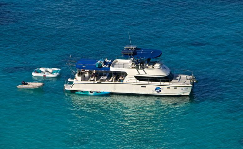 Catamaran - Blue World